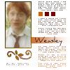 Harry Potter avatar by Laila